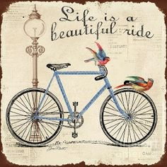 Life is a Beautifu Ride